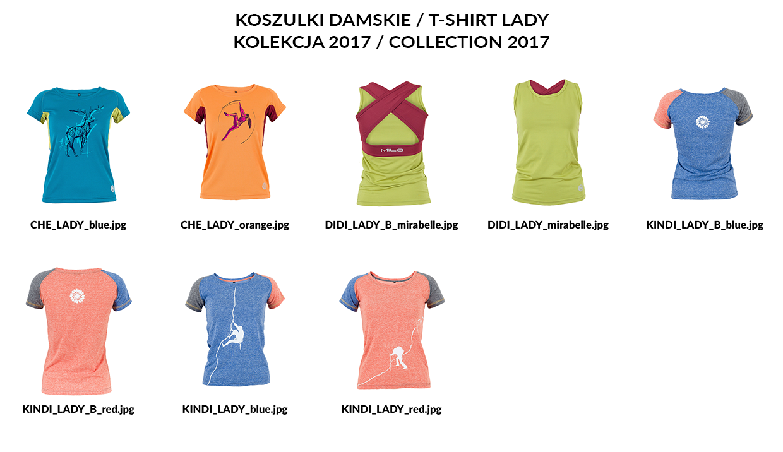 Koszulki damskie 2017