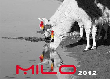 MILO cover catalog 2012